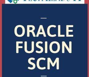 Fusion SCM 26th Batch 02-08-2019